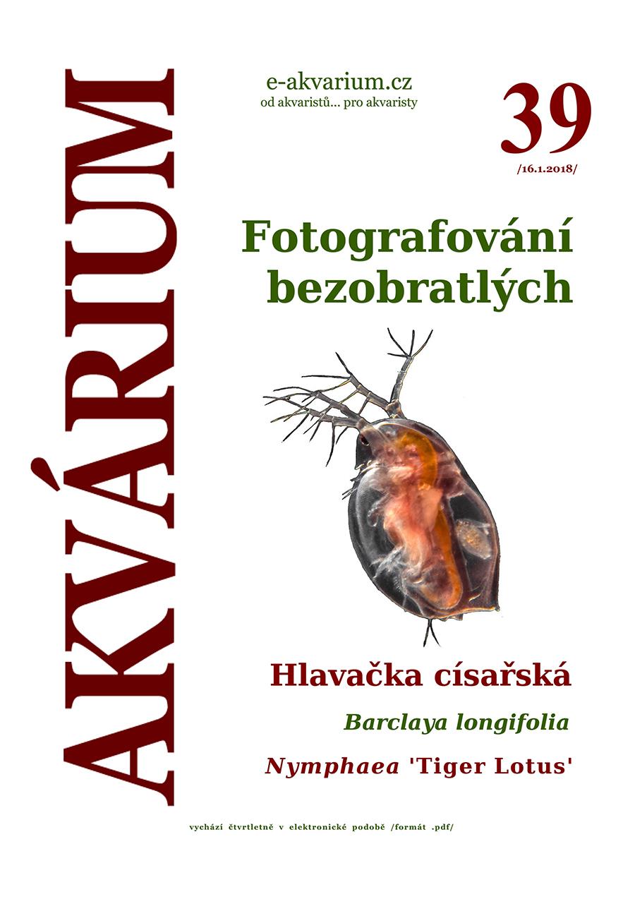 akvarium39-1