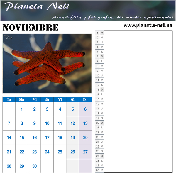 2016-11-Noviembre
