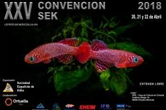 SEK CONVENCION