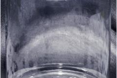 Prueba emergido Bucephalandra