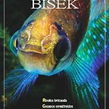 BISEK-120